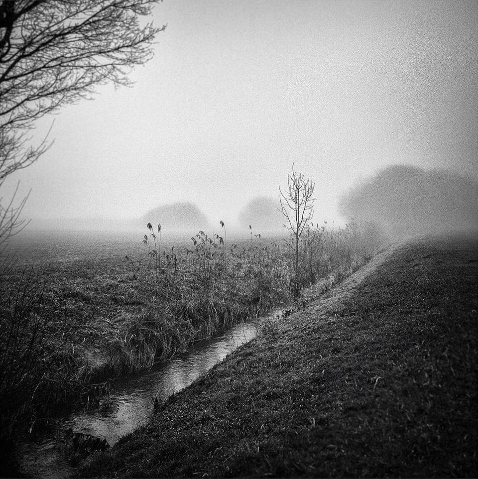 Bachlauf im Nebel