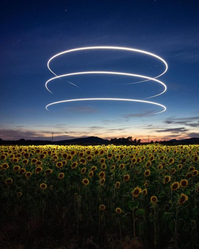 Lichtstreifen am Himmel über einem Sonnenblumenfeld