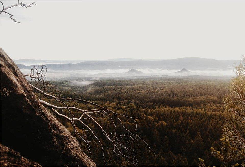 weite Landschaft mit Wald, Hügeln und Nebel