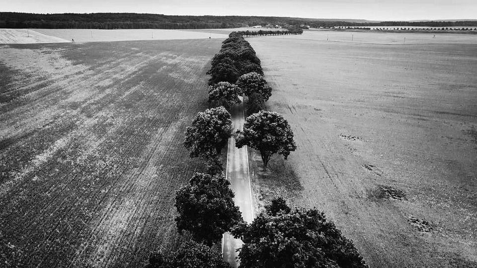 Luftaufnahme Landstraße zwischen Feldern