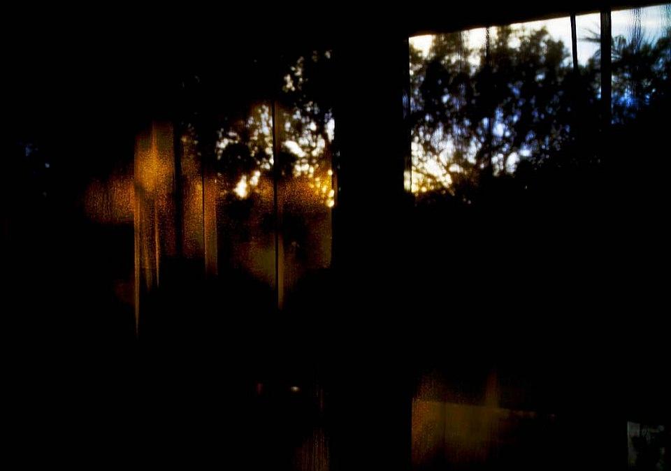 goldenes Licht fällt durch Bäume und ein Fenster in einen dunklen Raum