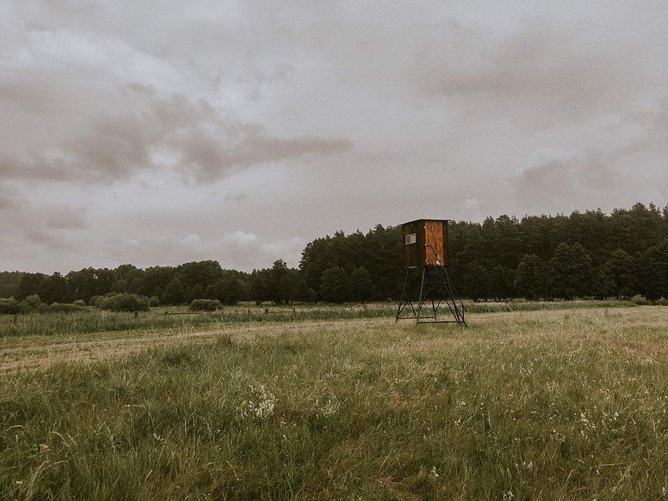 Hochstand auf einem Feld vor einem Wald