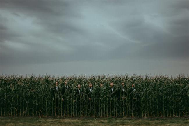 Männer im Maisfeld