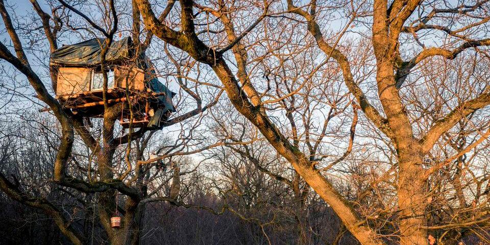 Der Kampf um den Hambacher Forst #AlleFürsKlima - kwerfeldein – Magazin für Fotografie