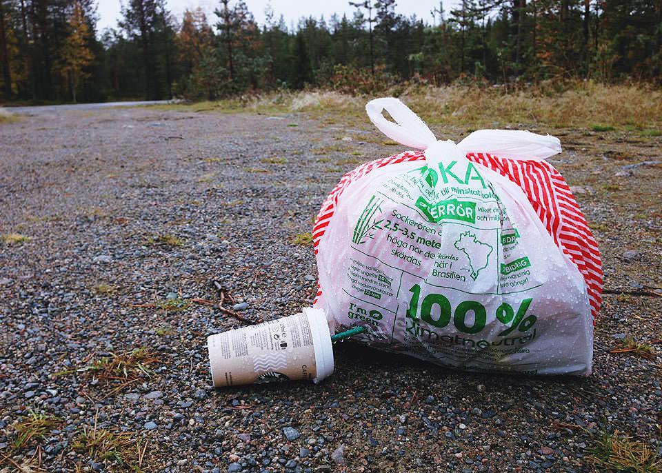 Müll im Wald