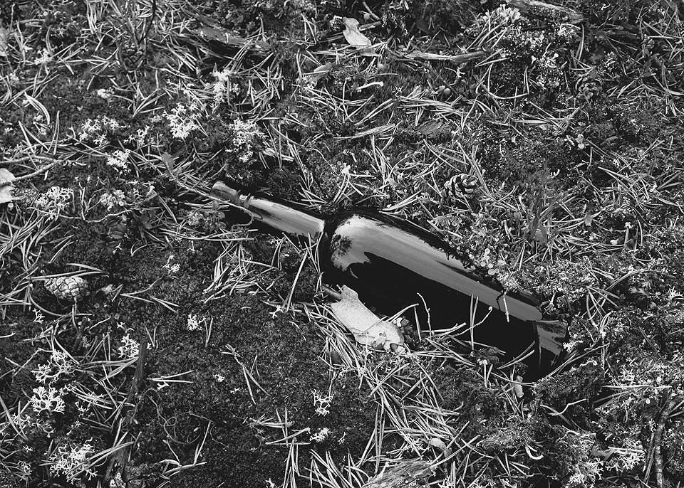 Flasche im Wald
