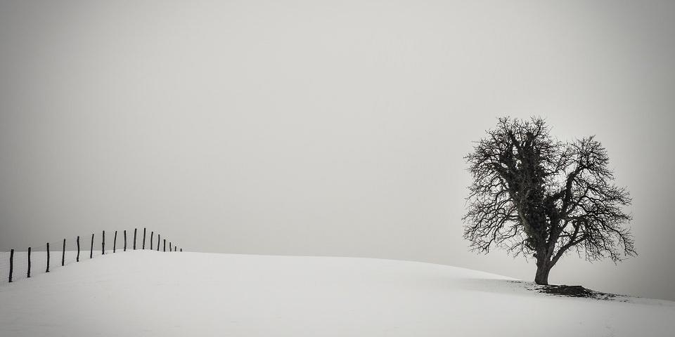 Von der Einfachheit - kwerfeldein – Magazin für Fotografie