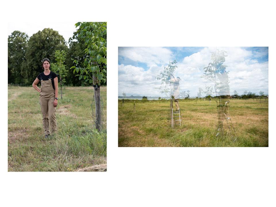 Frauenportrait und Walnussbäume