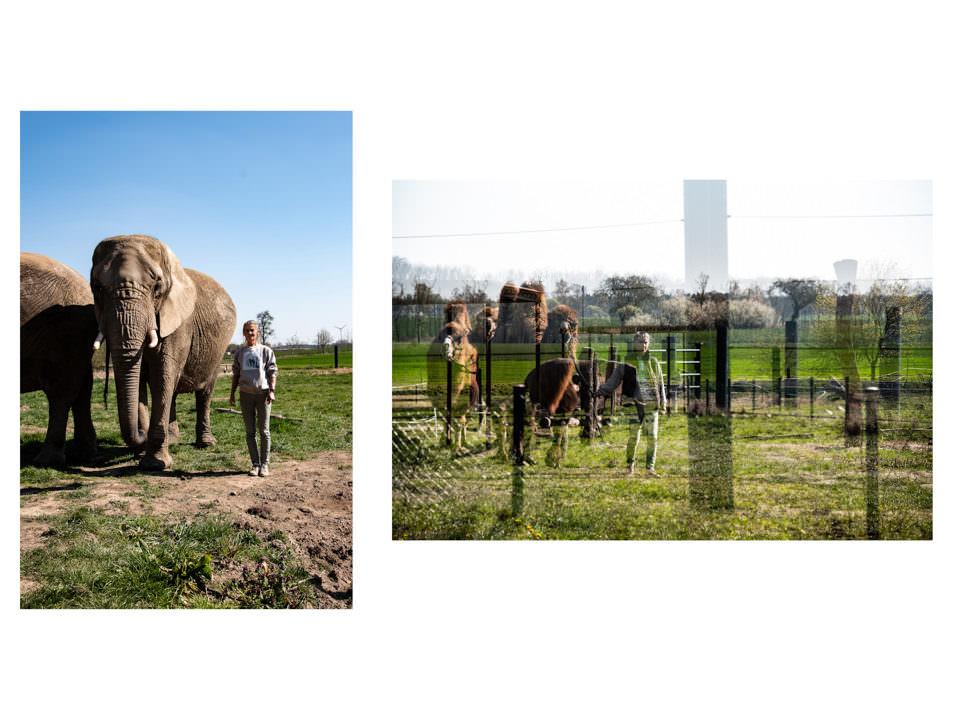 Frau mit Elefanten