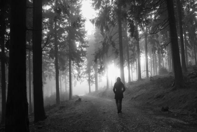 Person im nebligen Wald