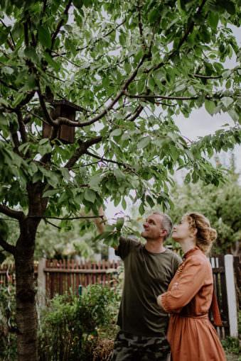 Zwei Menschen sehen zu einem Baum hoch