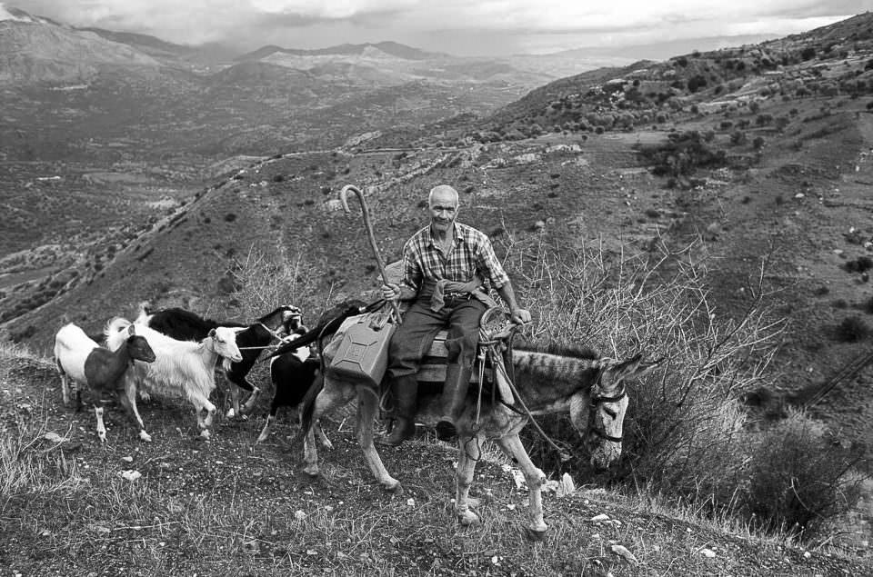 Mann mit Tieren