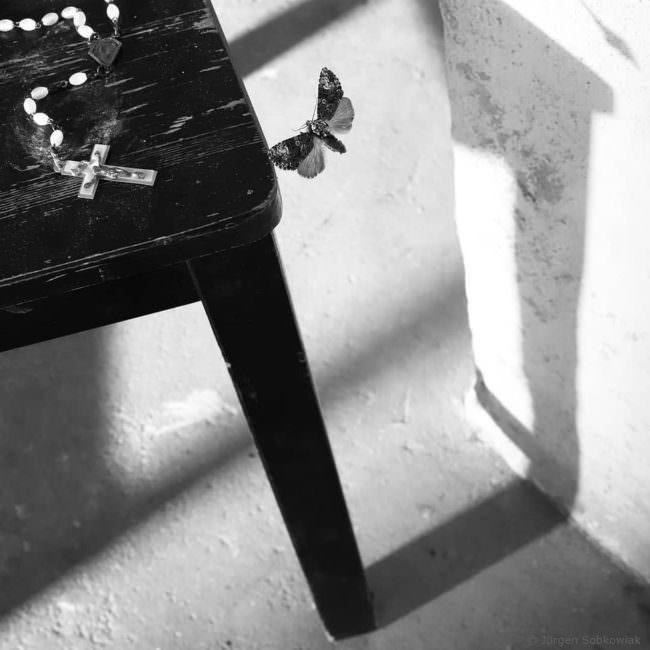Stuhlbein mit Schatten und Motte