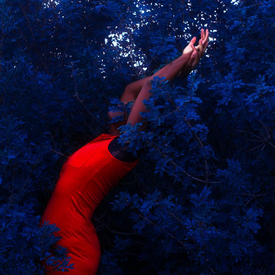 Frau in blauem Gebüsch