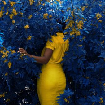 Frau steht in blauem Gebüsch mit gelben Blüten