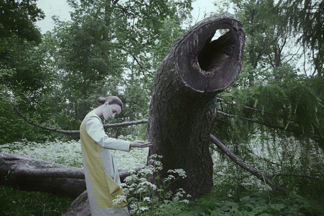 Frau an einem abgesägten Baum