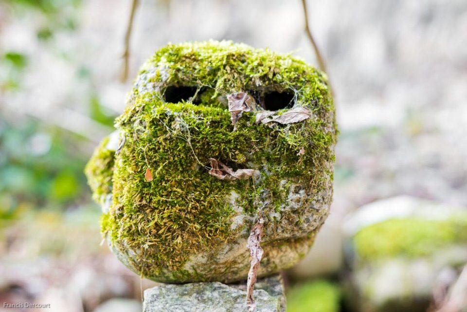 Bemooster Stein mit Gesicht
