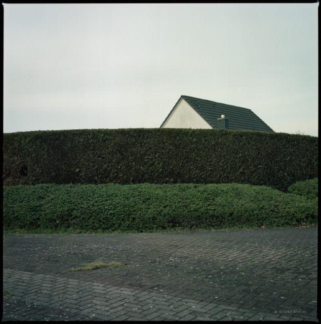 Haus hinter einer Hecke