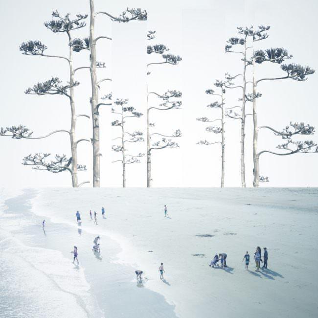 Collage mit Menschen im Schnee und gigantischen Bäumen