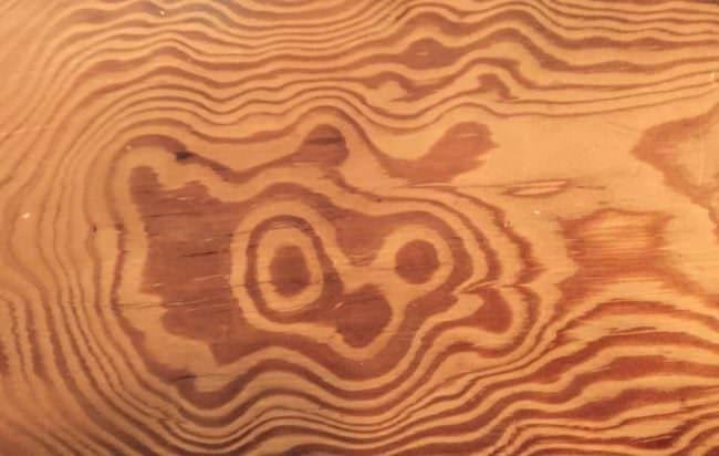 Holzmaserung mit Pareidolie