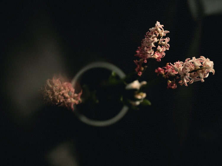 Blumen in einer Vase von oben