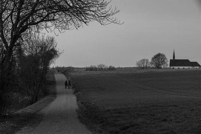 Weg an einem Feld