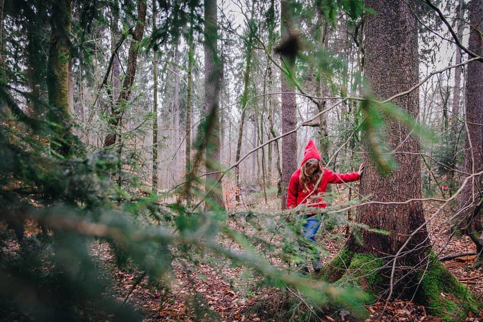 Mensch mit Roter Kaputze im Wald