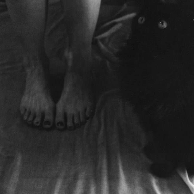 Füße und Katze