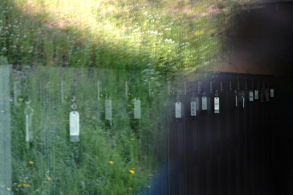 Schließfächer und eine grüne Wiese verschmelzen in der Reflexion einer Fensterscheibe