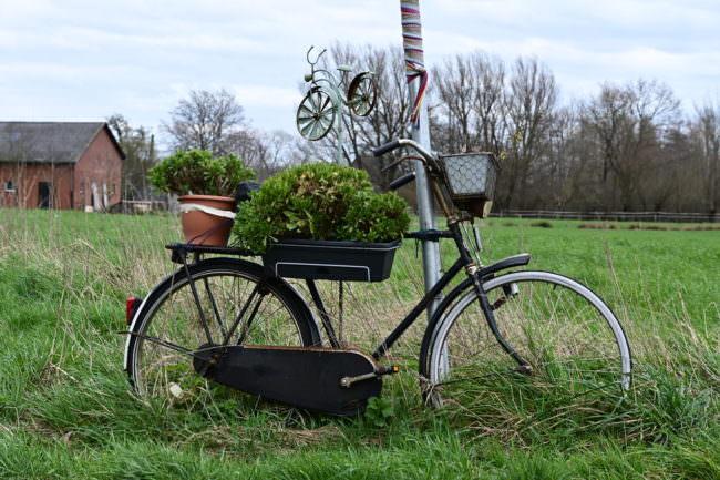 Fahrrad mit Blumentöpfen