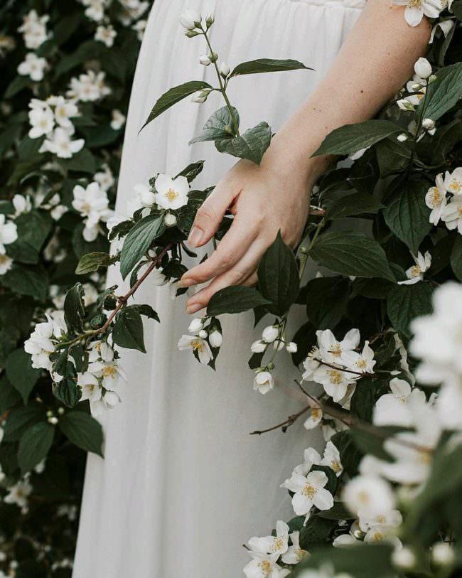 Hand in Blüten