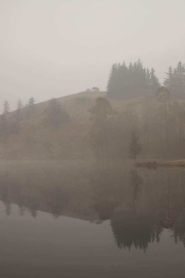 neblige Landschaft an einem See