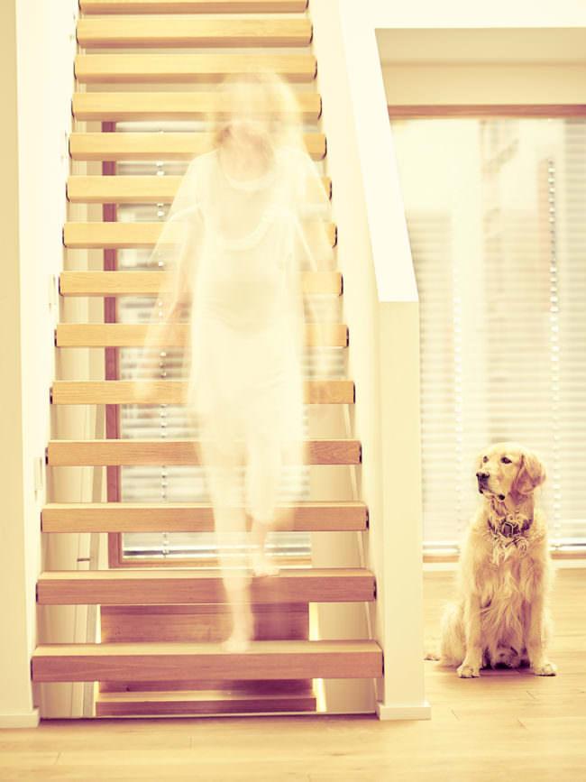 Frau unscharf auf einer Treppe, daneben ein Hund
