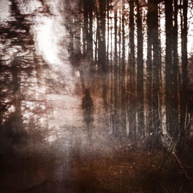 Surreales Bild einer Person im Wald