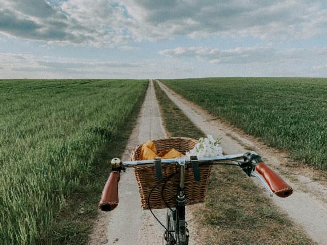 Fahrradlenker vor einem Feldweg