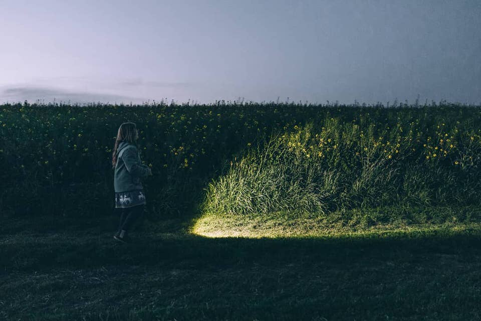 Kind an einer Hecke mit Taschenlampe