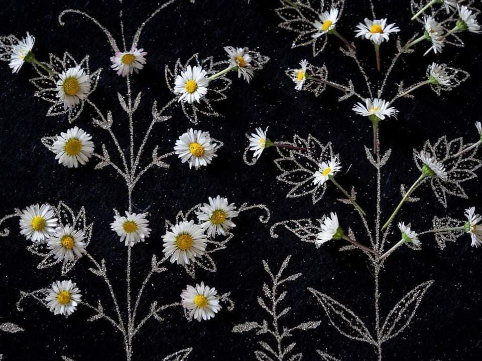 Gänseblümchen auf gemalten Blättern
