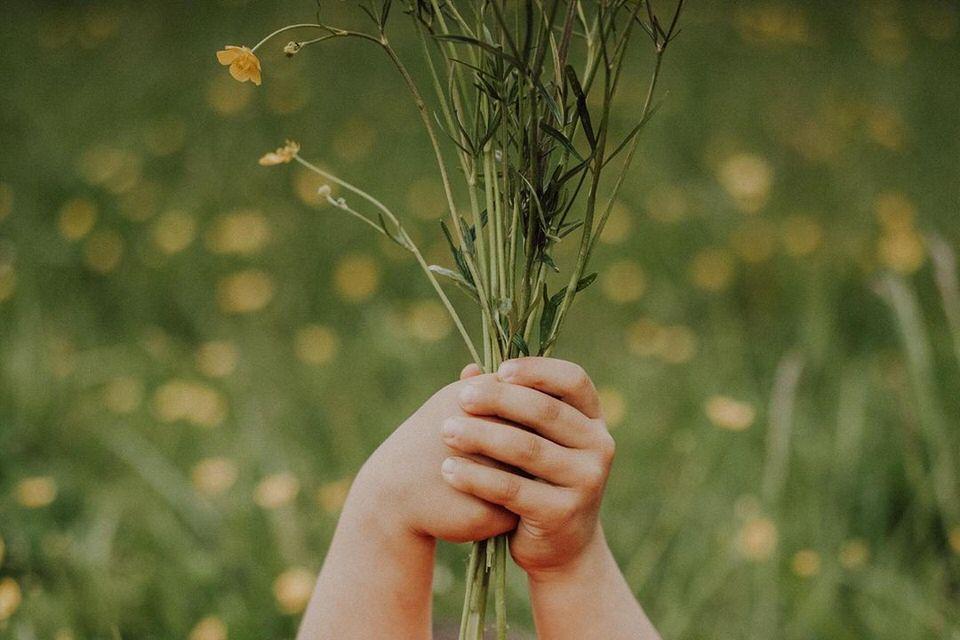 Kinderhände halten Blumen