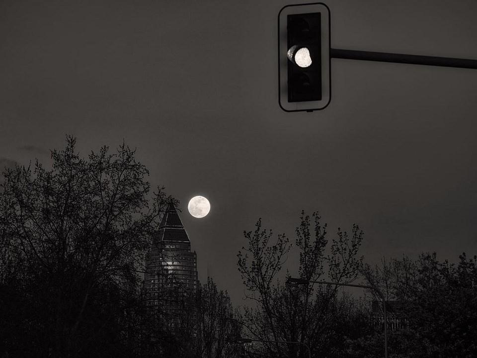 Ampel, Bäume, Gebäude und Mond