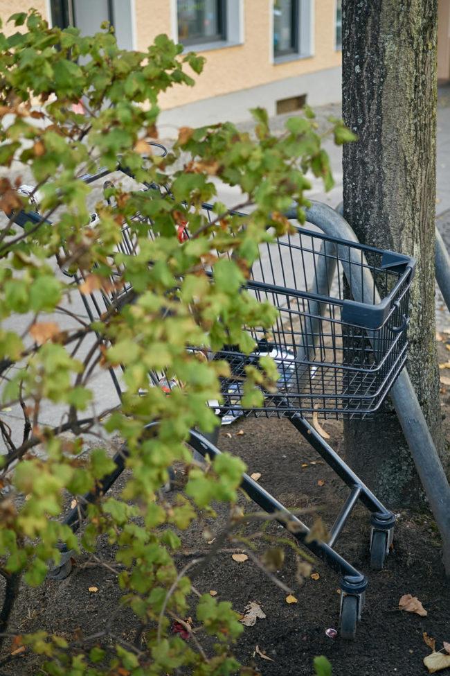 Einkaufswagen versteckt an einem Baum