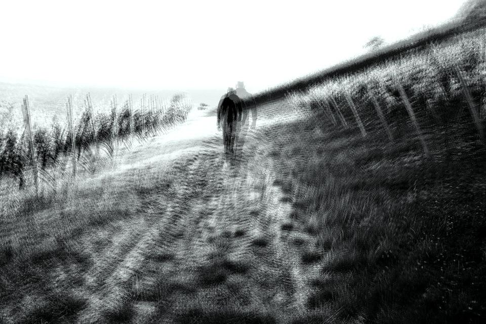 vertwackeltes Bild: Feldweg mit Person