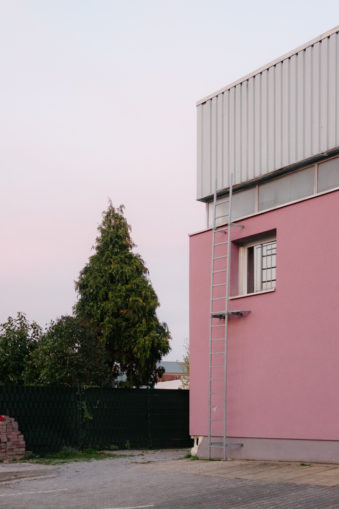 pinke Hauswand mit Leiter