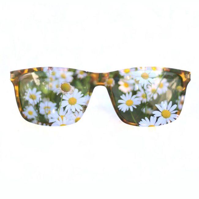 Brille mit Gänseblümchen