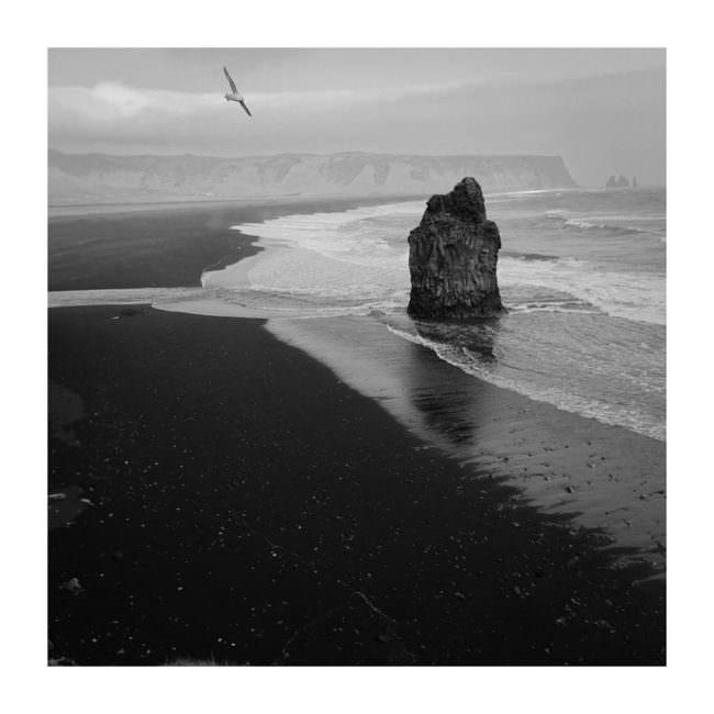 Strand mit Felsen im Wasser und Vogel am Himmel