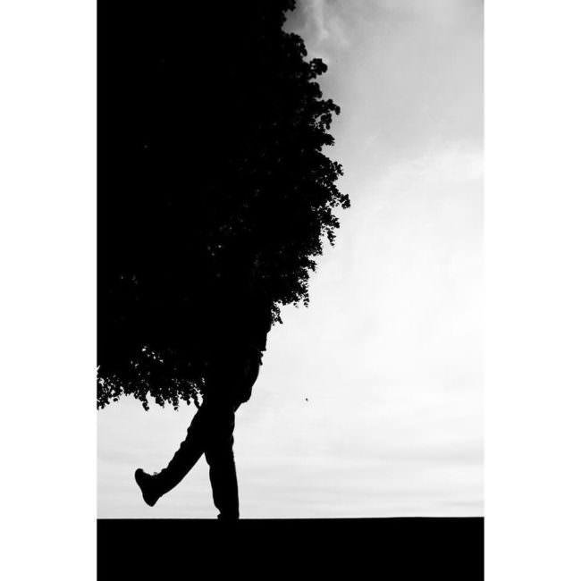 Schattenriss eines Baums mit Beinen
