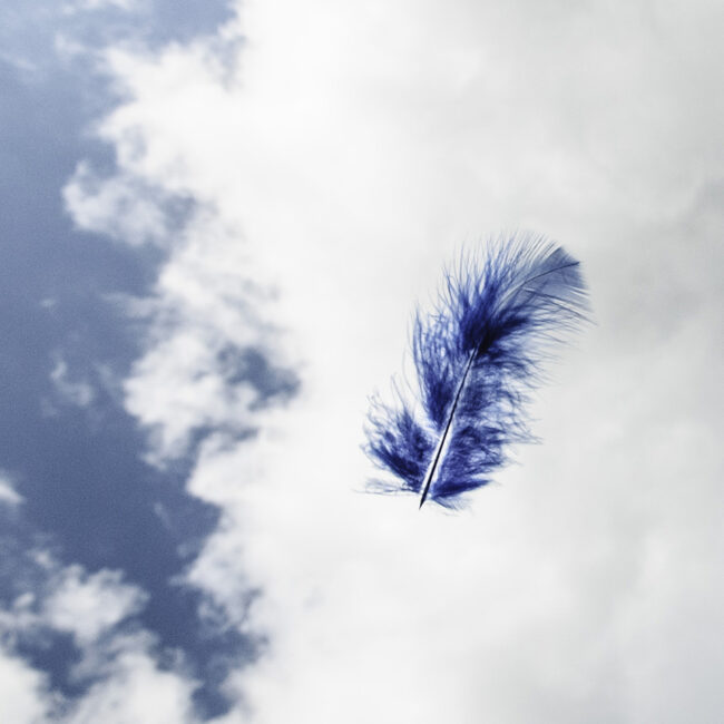 Eine blaue Feder vor einem wolkenbehangenem Himmel