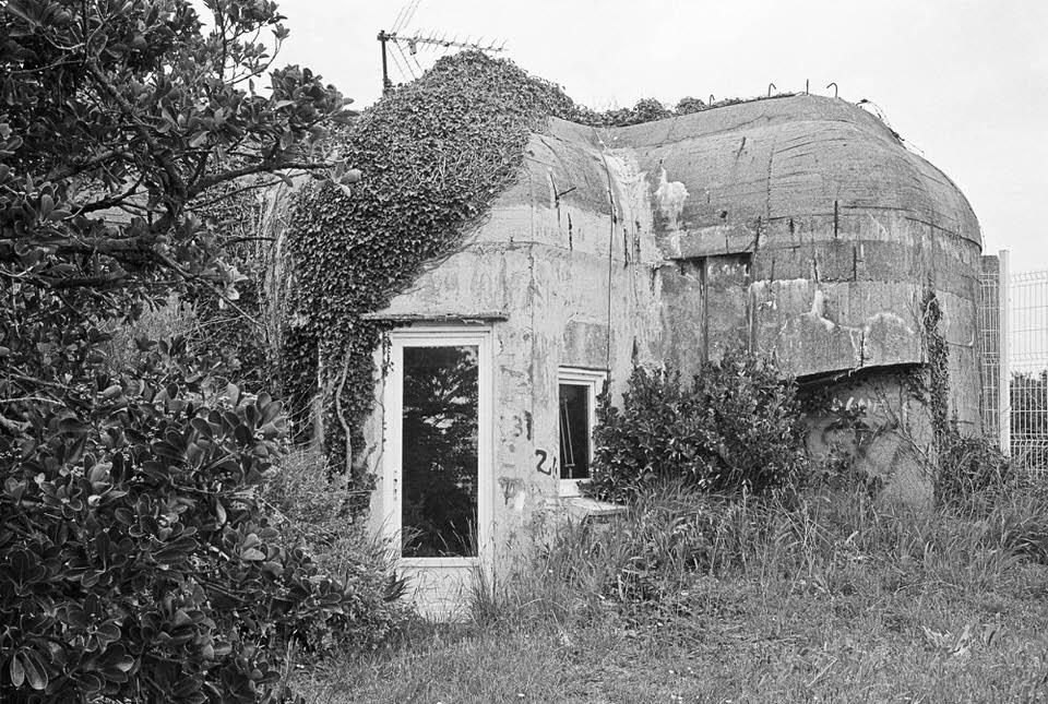 Von Efeu bewachsener Bunker mit normalen Hausfenstern und Türen