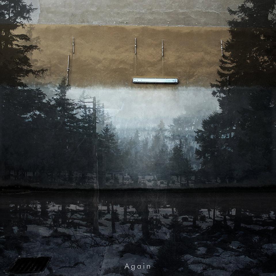 Collage aus zwei Bildern. Unten ein Wald im Schnee und oben eine Hausmauer mit Lampe