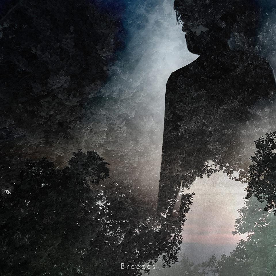 Schattenriss einer Person vor Bäumen