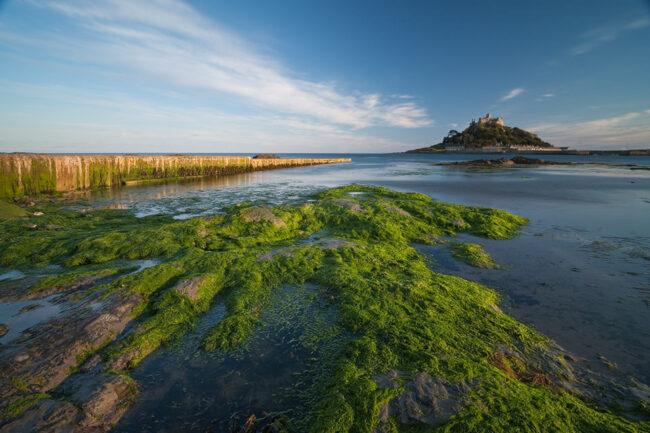 Moos über Steinen im Wasser, dahinter ein strahlendblauer Himmel und am Horizont eine Burg.